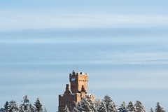 Tornet vinter