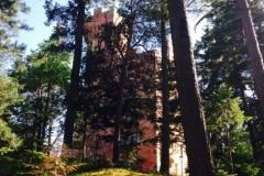 Tornet sommar