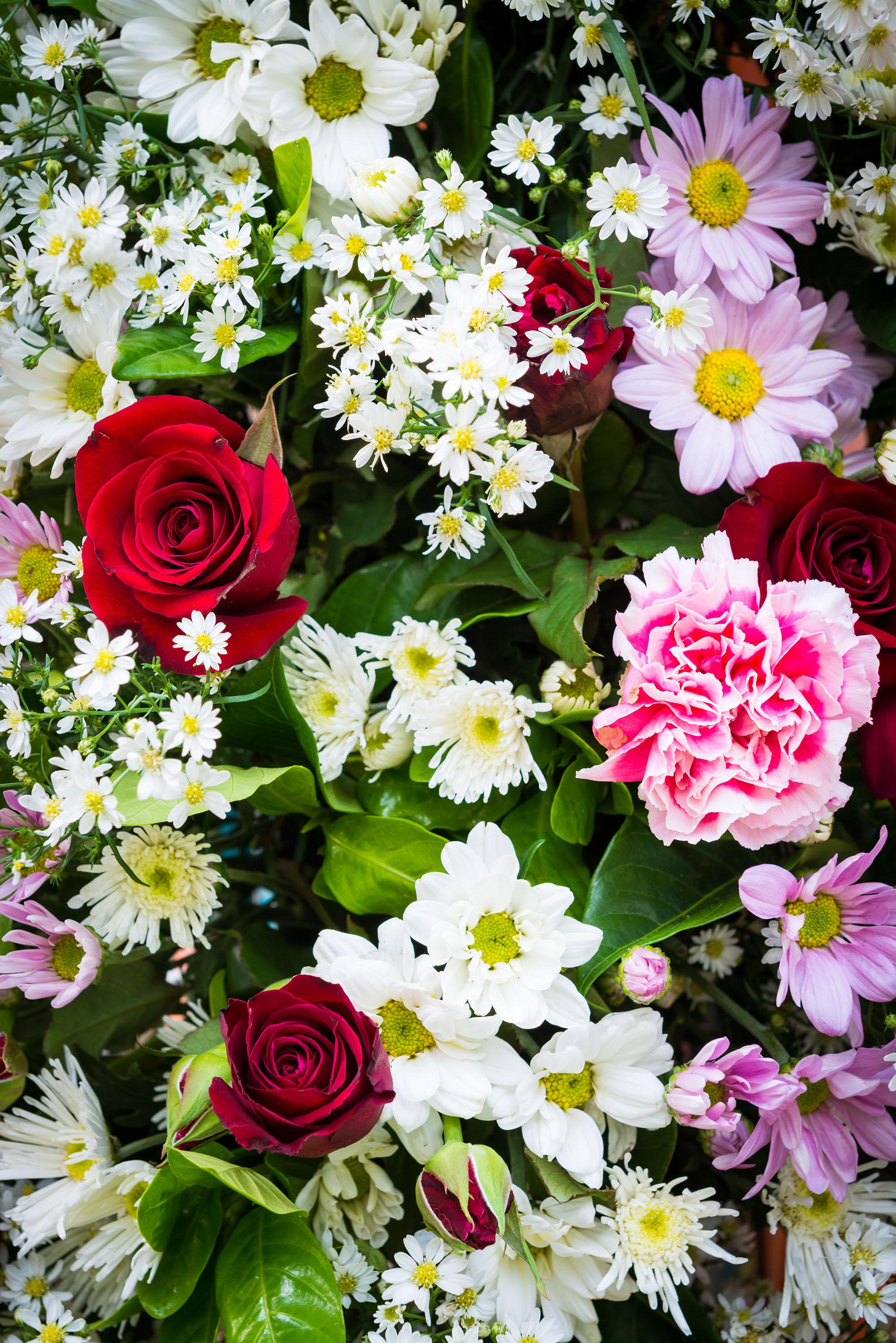 livets blomma betydelse